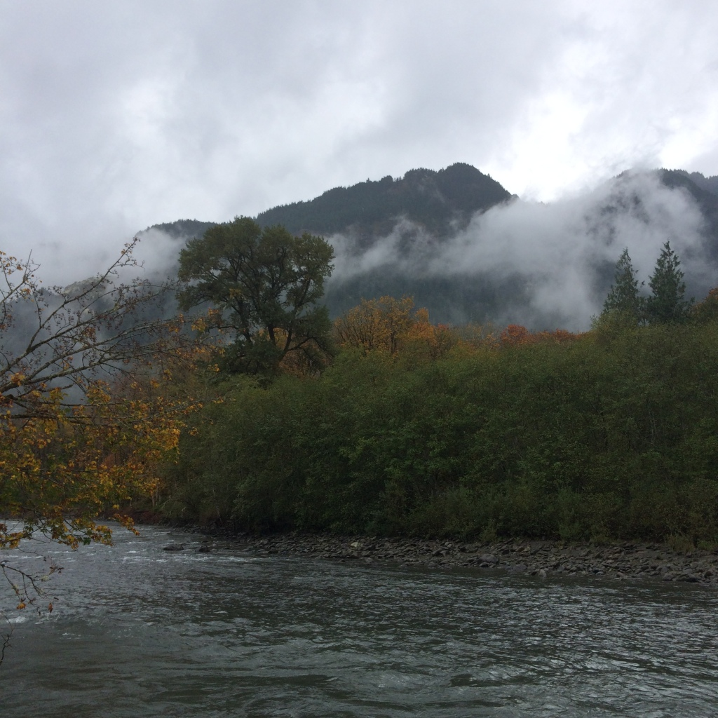 Fall Elwha River Views