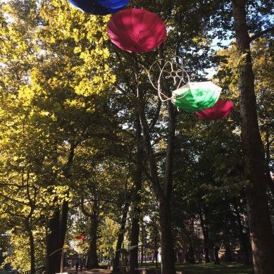 Umbrellas in the Park
