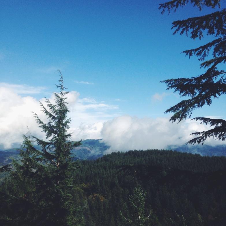 Cedar Lake Viewpoint