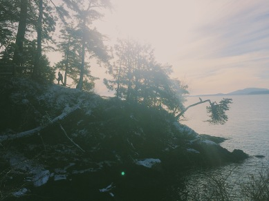 Processed with VSCO with n3 preset