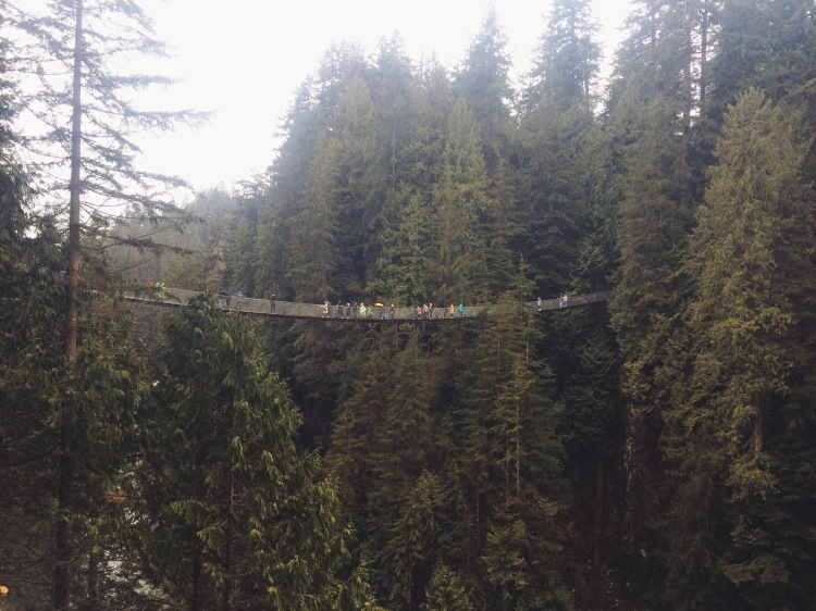 Views of Capilano